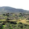 Ancient Gournia, Crete