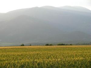 Mount Paiako, Kilkis