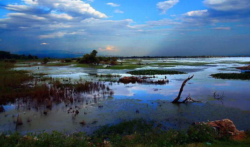 Lake Kerkini, Serres