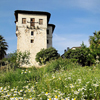 The Pelion Tower, Thessaly, Greece