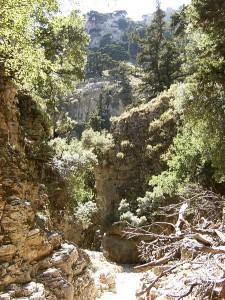 Imbros Gorge (Crete)