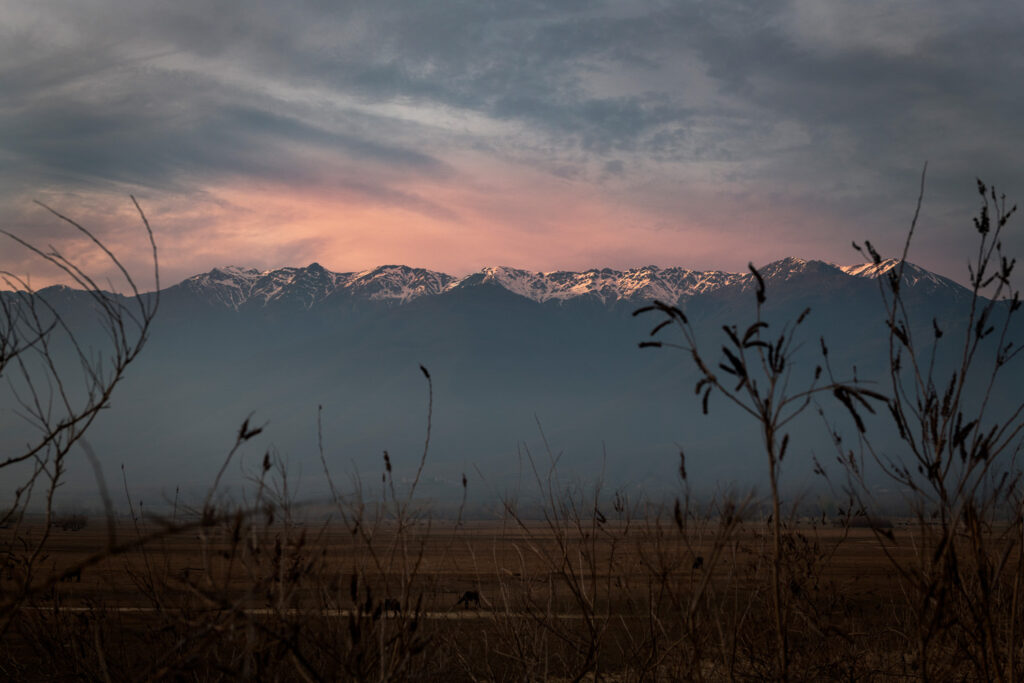 A picture at the National park of Kerkini lake in Serres during sunset, Central Macedonia Greece