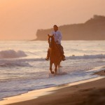 Horseback riding at the sandy beach of Karteros - 6km east of Heraklion