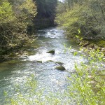 Ladonas river, tributary to Alfeios river, Peloponnes, Greece