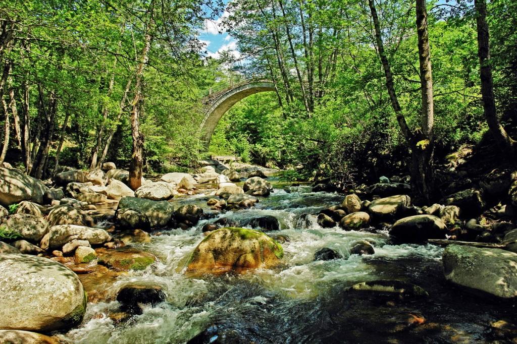 Tributary to Nestos River in the Rodopi Mountains, Greece - Sotiris Lambadaridis