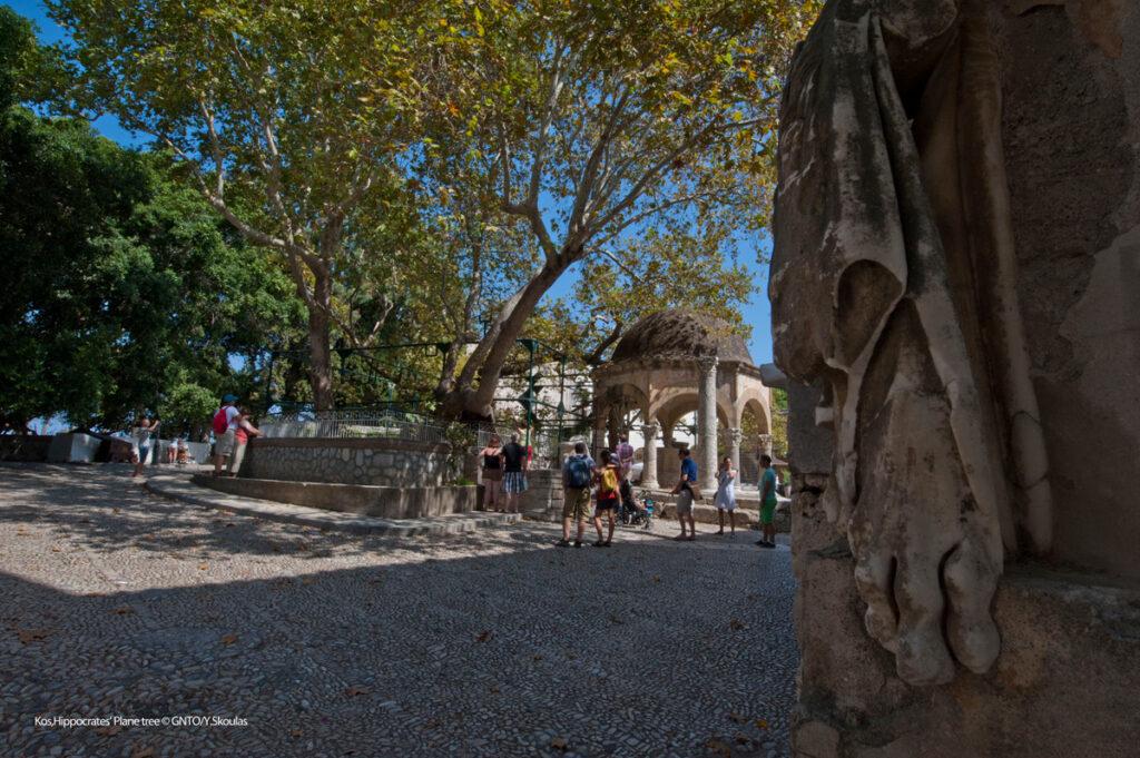 Hippocrates Platanos tree, Kos, Dodecanese Greece - Photo by Y. Skoulas