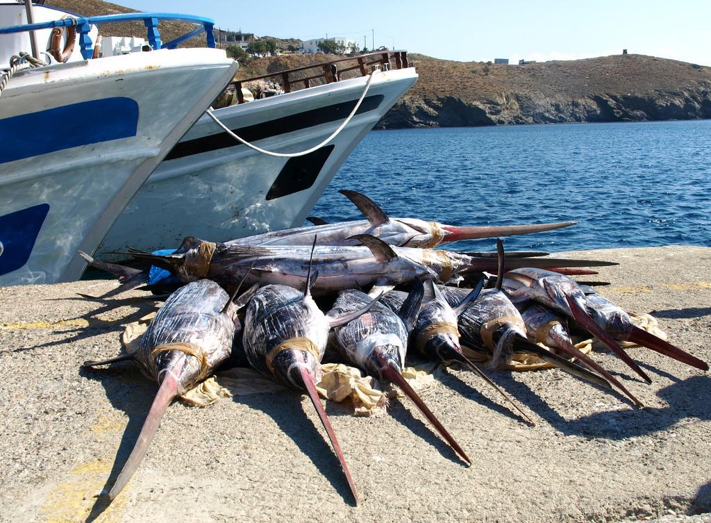 Sword fishing, Astypalaia - Photo by S. Lambadaridis