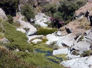 The gorge in Dipotamata, Andros, Greece