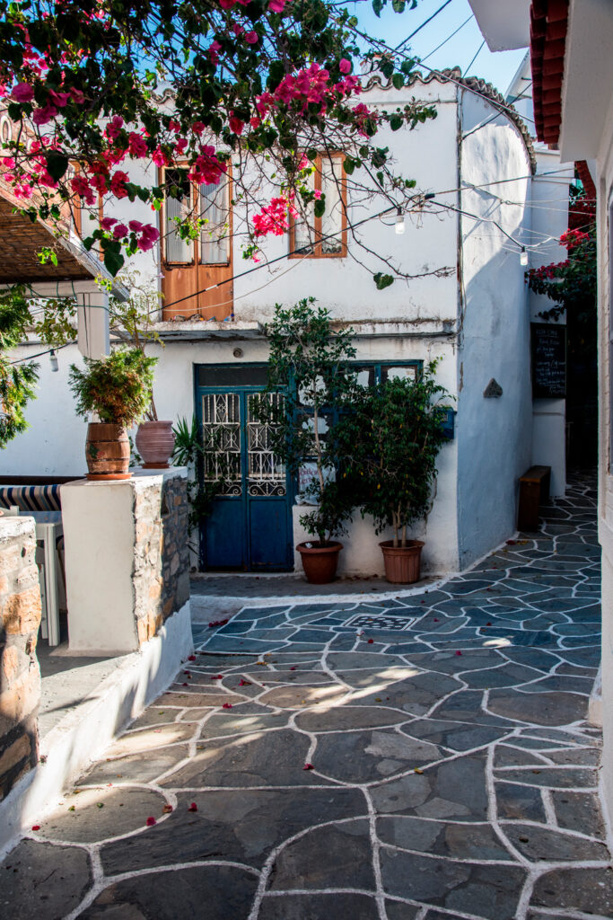 flowers-and-stairs-of-resendential-houses-on-kythnos-island-western-cyclades-greece