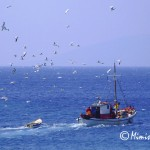 Fishing boat from Koufonisia, Greece