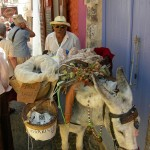 Street seller with his donkey on Santorini