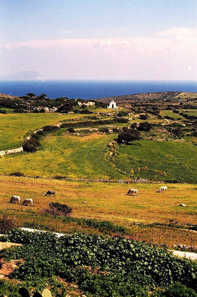 Colorful rural landscape of Iraklia, Smaller Cyclades, Greece