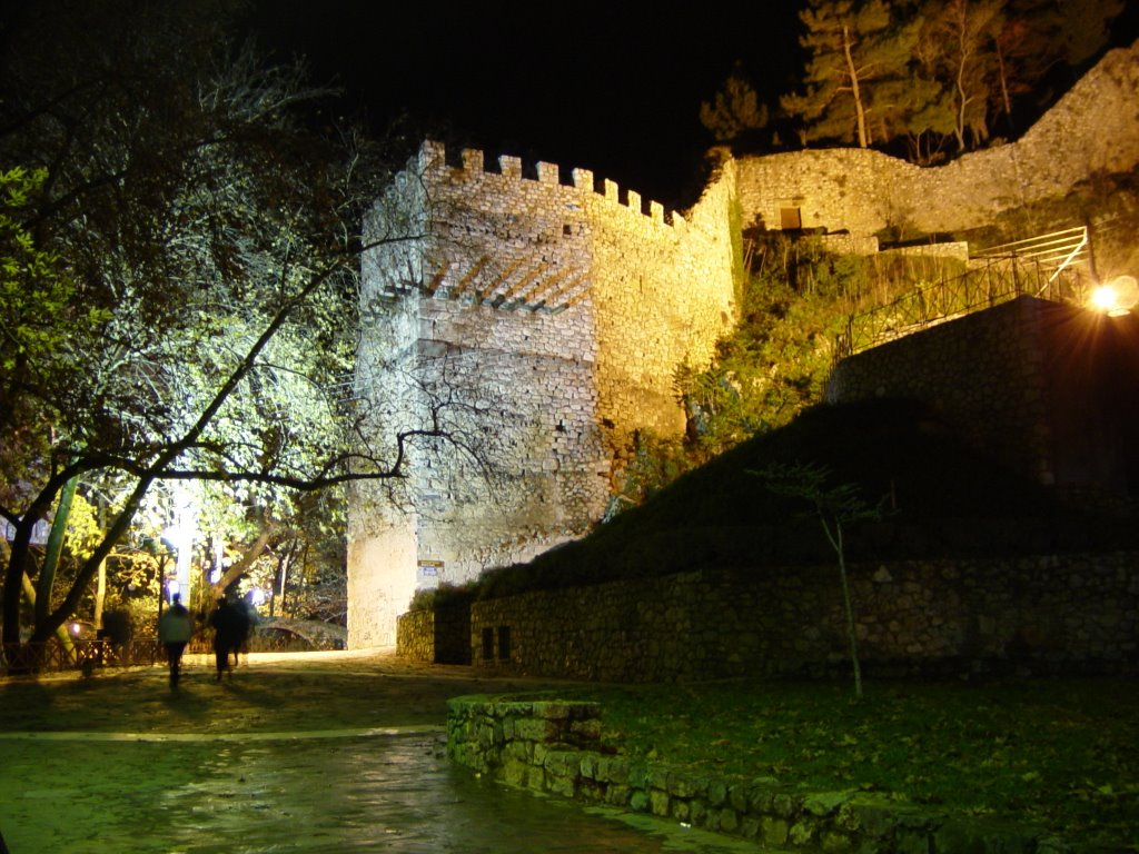 The Castle of Livadeia by night - Photo by Tasos K.