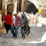 Donkeys at work in the steep alleys of Monemvasia