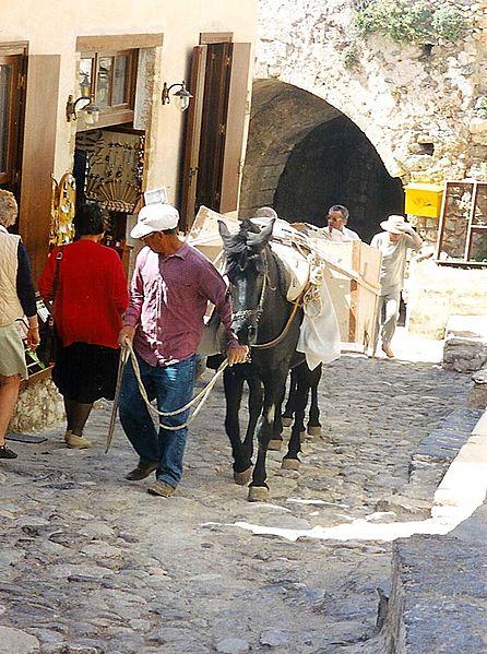 Donkeys at work in the steep alleys of Monemvasia