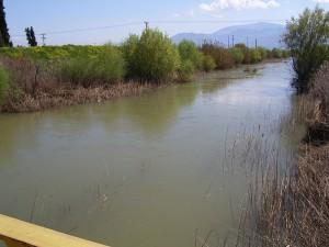 The river Cephissus