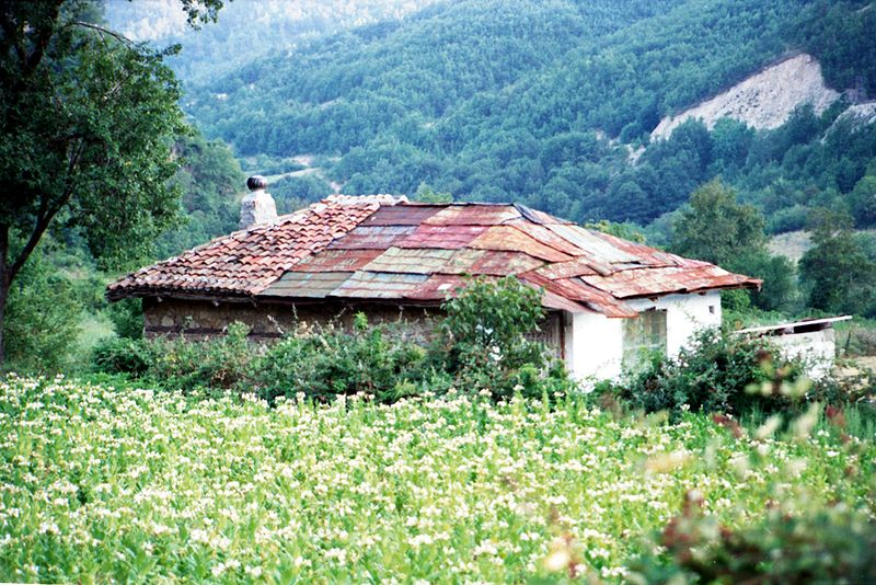Hut in the mountains of Xanthi
