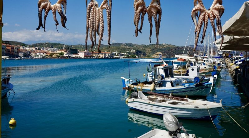 Travel to Peloponnese, Greece - Habor with boats and squids