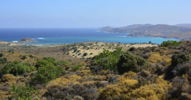 Lemnos, Greece - landscape and vegetation around Little Sahara aka Pachies Ammoudies