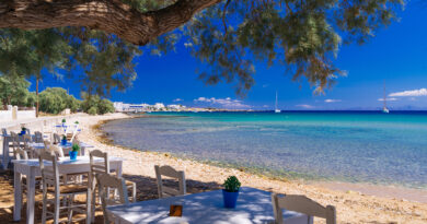 Travel to Paros island, Greece, great little tavern in the shades of olive trees