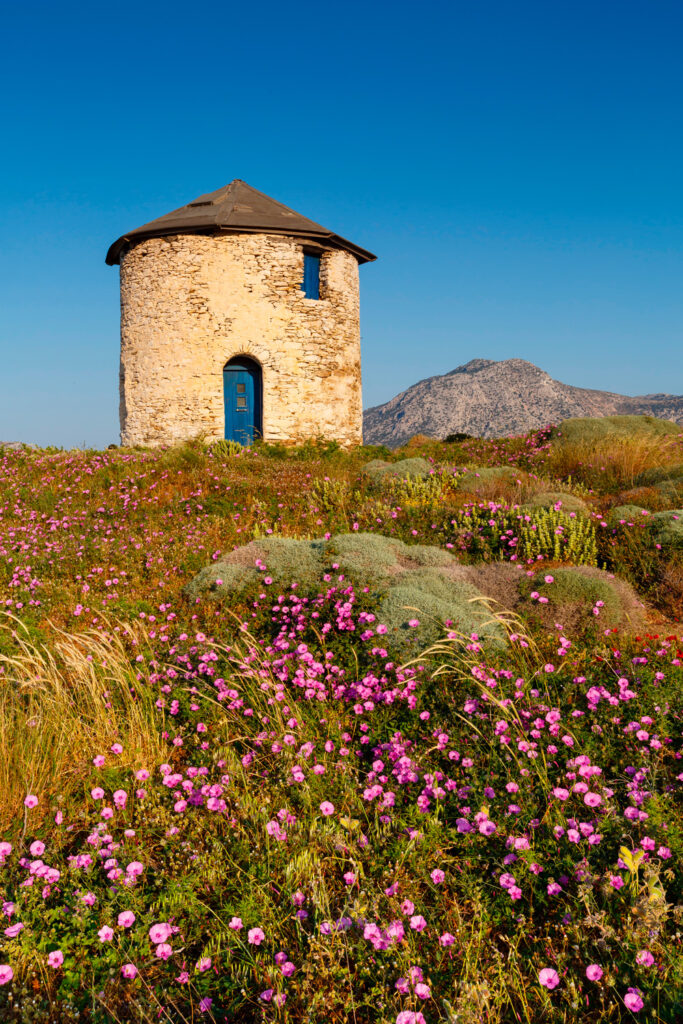 old-traditional-windmill-on-the-main-island-of-fournoi-korseon-in-northern-aegean-greece