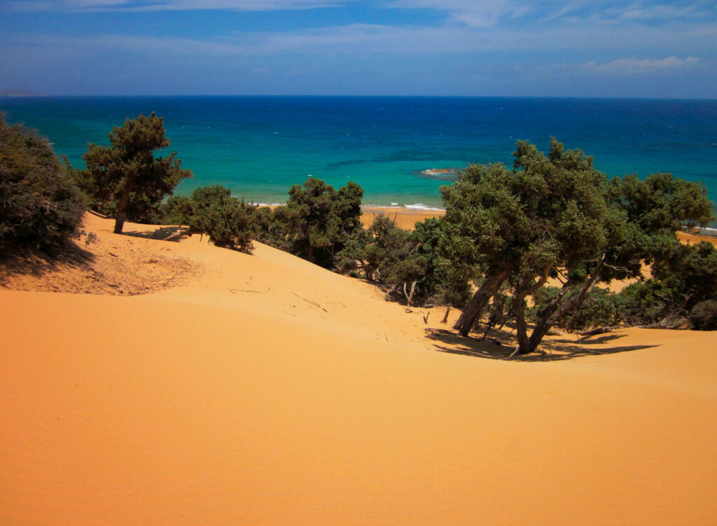 Orange sand dunes and savin trees at the beach of Agios Ioannis, Gavdos island, Greece