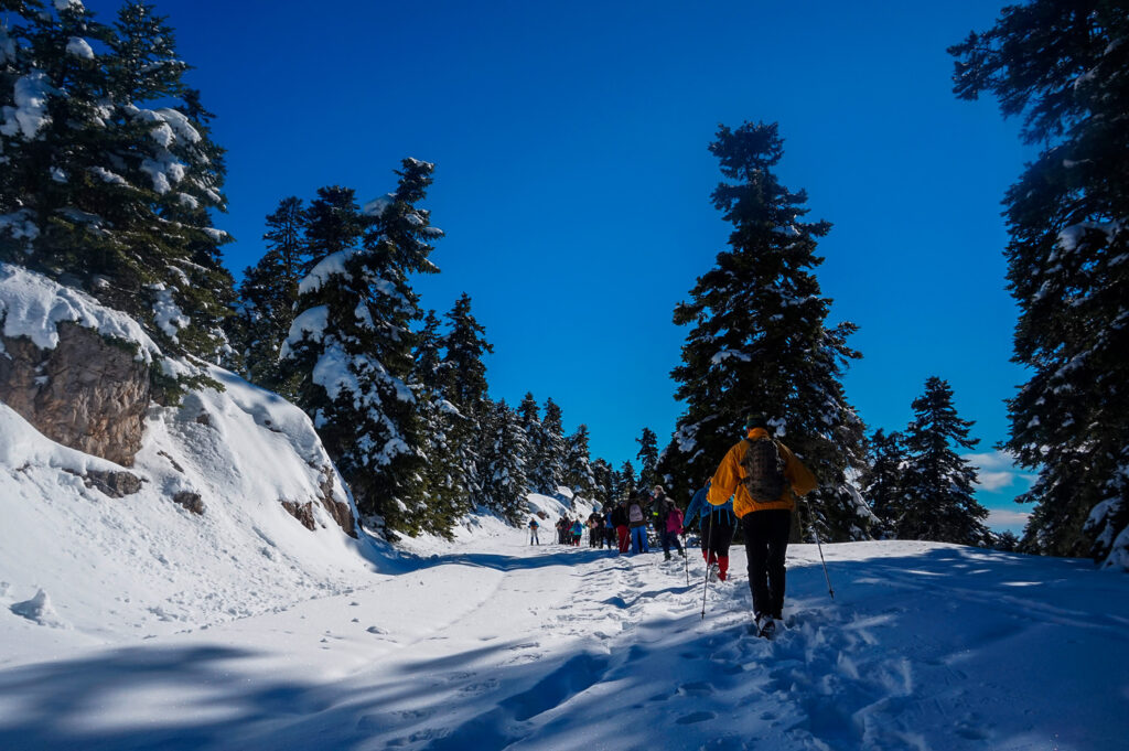 road-to-Parnassus-Shelter-Michael-Deffner-on-southwestern-slopes-of-Mount-Parnassos-at-an-altitude-of-1825m.-Only-500m-from-the-ski-center-of-Gerontovra-Voiotia-Greece