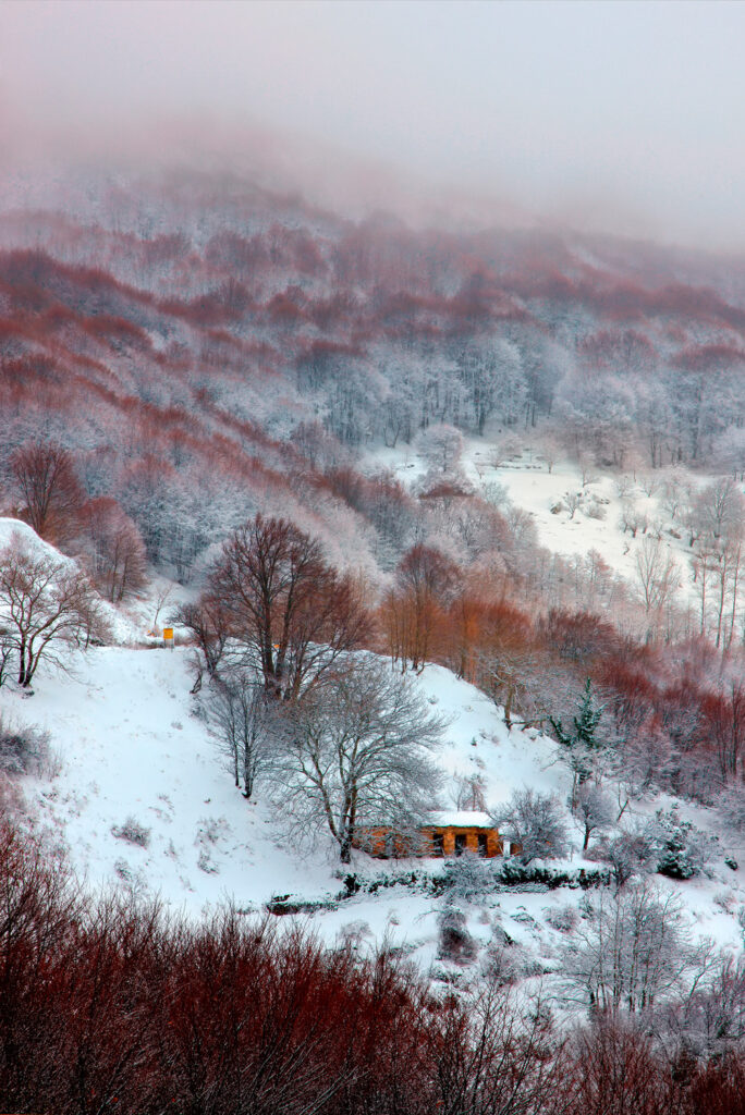 Snow in Pelion mountain close to Agriolefkes Ski Center in Pelion, Thessaly Greece