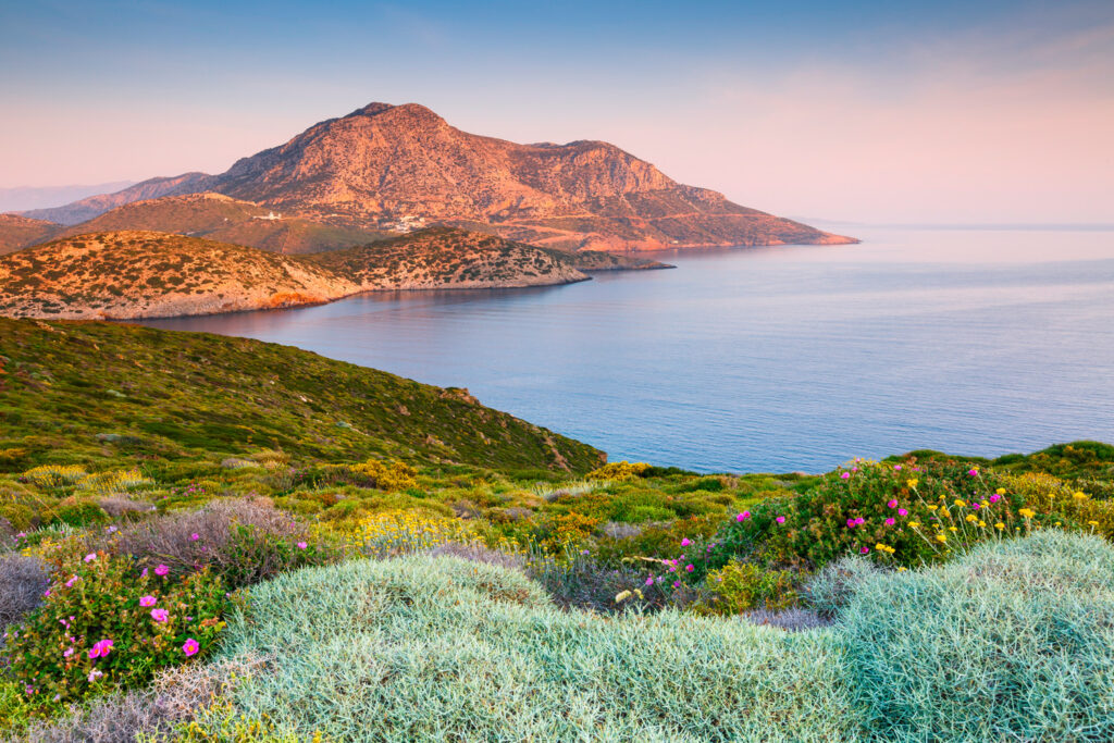 spring-flowers-on-fourni-island-and-view-of-thymaina-island-early-in-the-morning-greece