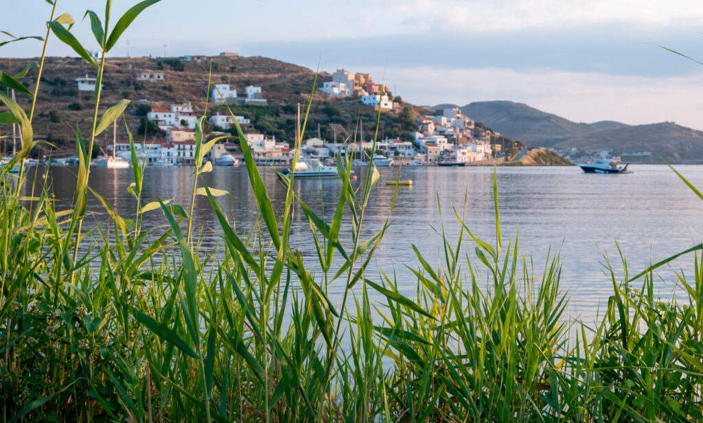 Vourkari village viewed through green reed in Kea island, Cyclades Greece