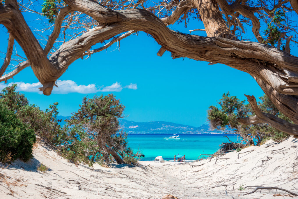 Exotic Chryssi island at the south of Crete, with the amazing Golden Beach, Greece