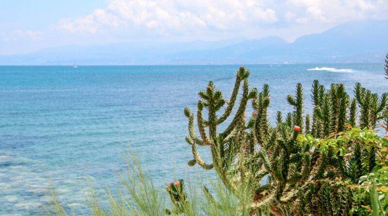 Blooming cactus and panoramic view to Cretan sea from the coast of Malia, Crete, Greece